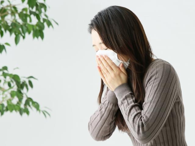 花粉症の主な症状と薬対策を始める時期 何科を受診?